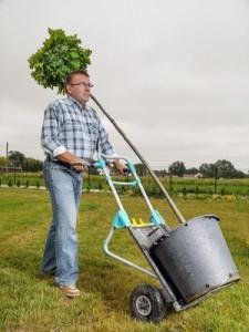 Mann transportiert mit der Wolfcraft Sackkarre TS 1000 einen Baum.